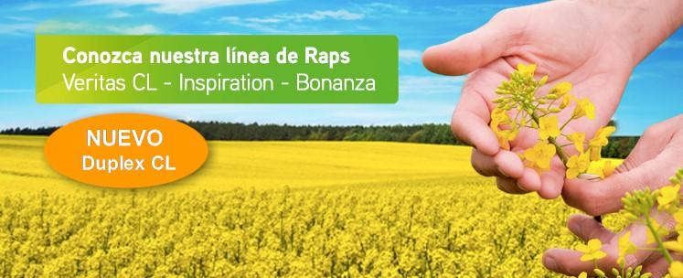 Banner principal - Raps