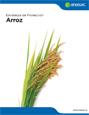 Estrategia de protección arroz